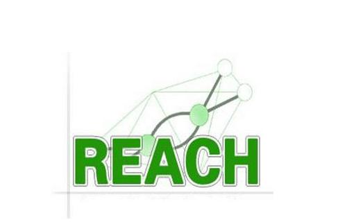 reach测试是什么意思