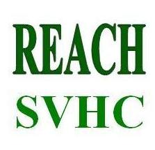 reach测试报告是什么