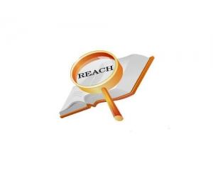 reach测试哪里能做,REACH测试办理流程是什么